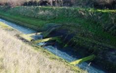 Schmutzwasserlauf Landwehrbach Mit Stoerbalken