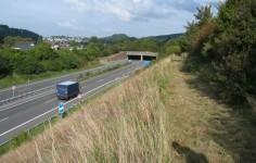 Einschnittslage Der Autobahn Ansicht Von Der Boeschung