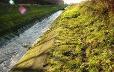 Schmutzwasserlauf Landwehrbach